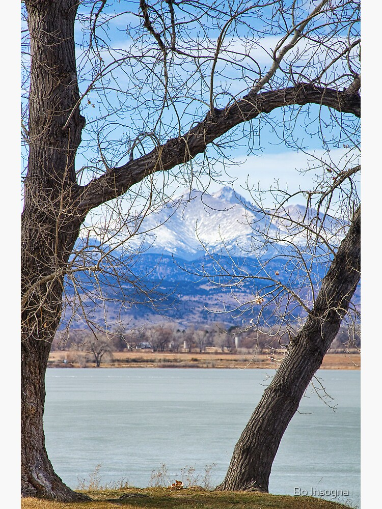 View Through The Trees To Longs Peak by mrbo