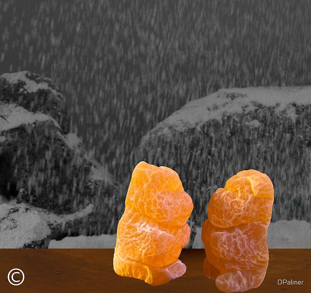 Honey Bears in Window by DPalmer