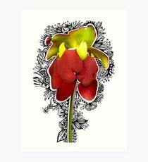 Picture Plant Flower - Photabgle Art Print