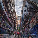 Rutledge Lane by Peter Hammer