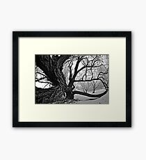 Sleepy Hollow Framed Print