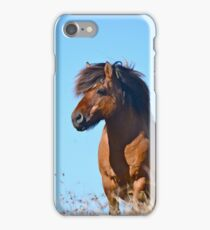 Shetland Pony Stallion iPhone Case/Skin