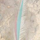 Feather Sails ~ by Emma  Wertheim