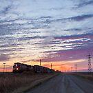 Prairie Awakening by Steve Boyko