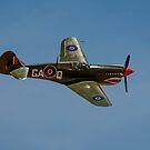 P-40N Kittyhawk by Chris  Randall