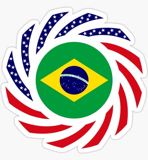 Brazilian American Multinational Patriot Flag Series by Carbon-Fibre Media