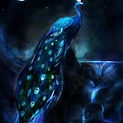 Star's tranquil peacock by Louis Dyer