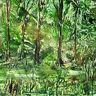Emerald Glade by Catherine Price