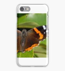Butterfly 11 iPhone Case/Skin