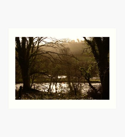 Rainy Day on the Camel Trail Art Print