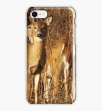 Two White-tailed Deer iPhone Case/Skin