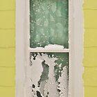 Snow Spectre by artwhiz47