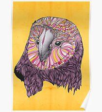 Lovely Owl (Feat. Bryan Gallardo) Poster