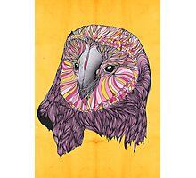 Lovely Owl (Feat. Bryan Gallardo) Photographic Print