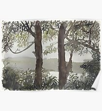 Smith's Lake Trees Poster
