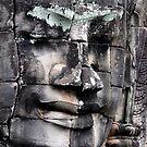 Banyon Temple by yook