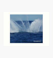 Whale Calendar 1 February Art Print