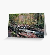 Autumn Drizzle On Kitchen Creek Greeting Card