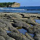 Shipwrecks Beach by Barbara Morrison