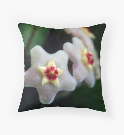Hoya Carnosa Throw Pillow