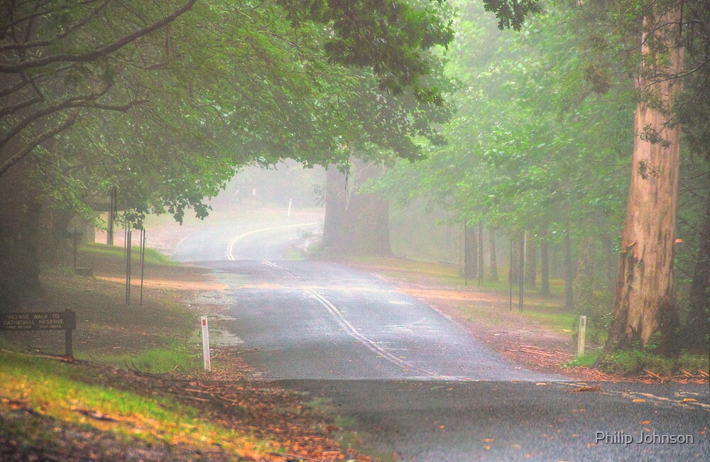 The Avenue - Mount Wilson NSW - The HDR Experience by Philip Johnson