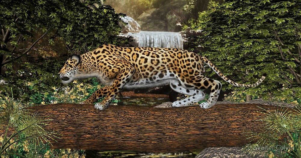 Quot Jaguar Waterfall Quot By Walter Colvin Redbubble