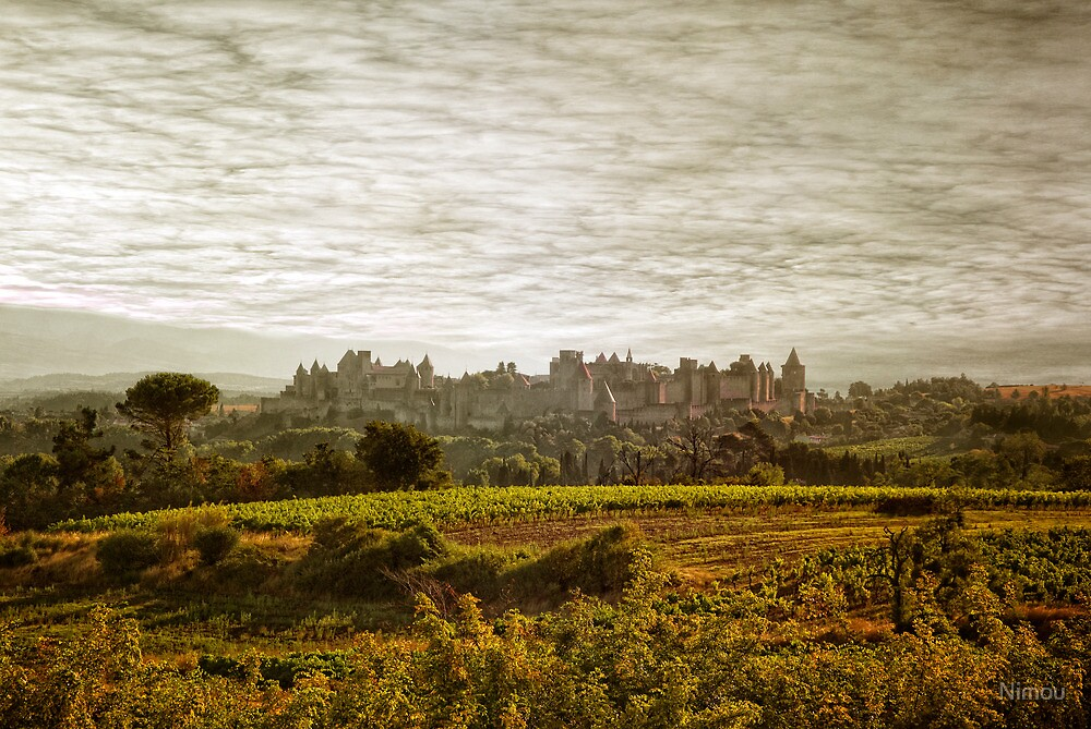 Historic fortified city of carcassonne (France) by Nimou