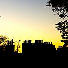 Chimney Pots. Sunset. Edinburgh. by Robert Steadman