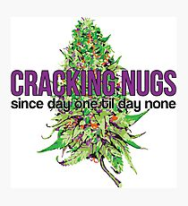 Cracking Nugs Photographic Print