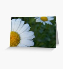 Cropped Greeting Card