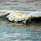"""SURF """"Two Up"""" by Andrew Prince"""