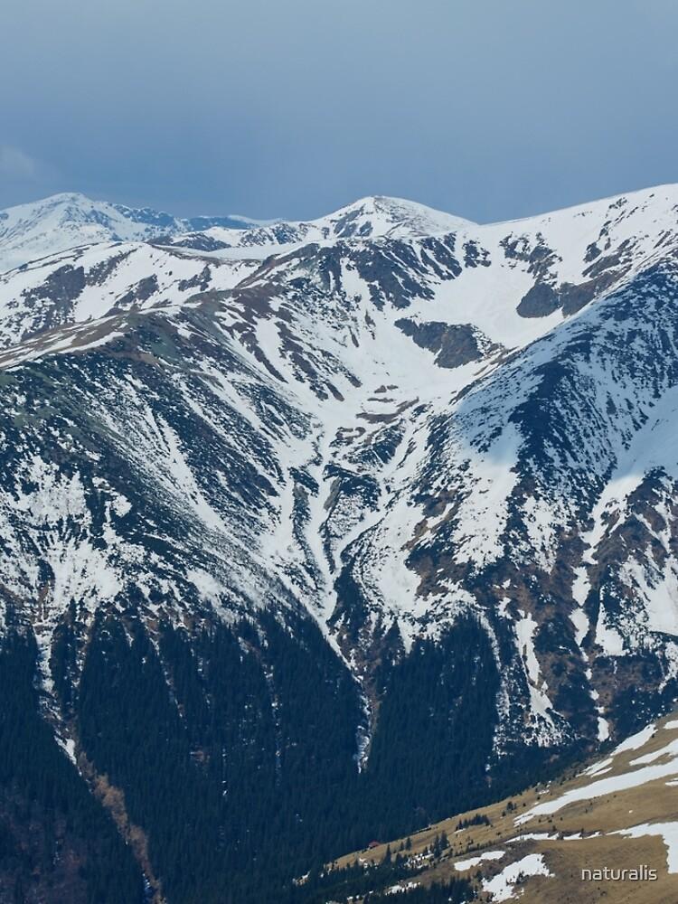 Mountain range panorama by naturalis