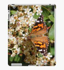 Australian Painted Lady Butterfly iPad Case/Skin