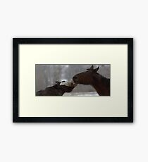 The Scuffle Framed Print