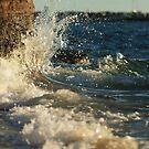 Splash by SylvestreLeChat