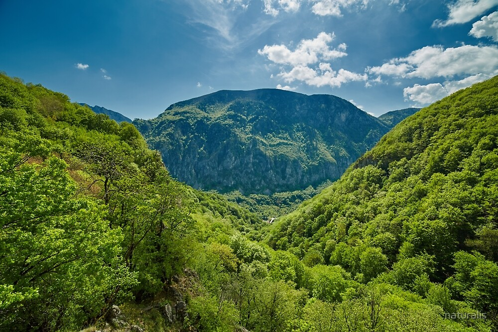 Mountain landscape on springtime by naturalis