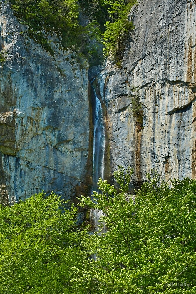 Vanturatoarea waterfall by naturalis