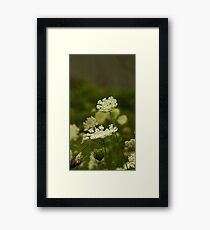 Chin Up Framed Print