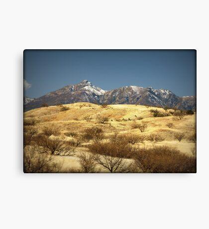 Snowy Peaks on a Desert Plain Canvas Print