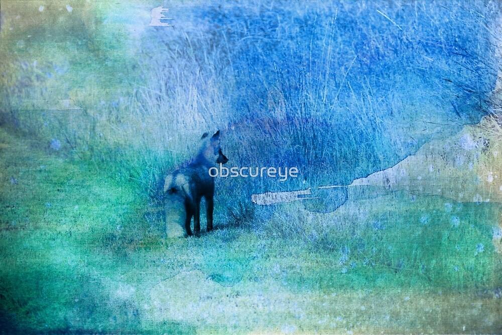 Watercolor Fox by obscureye