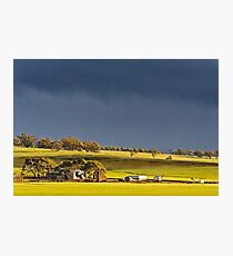 Storm Clouds Over Canola Photographic Print