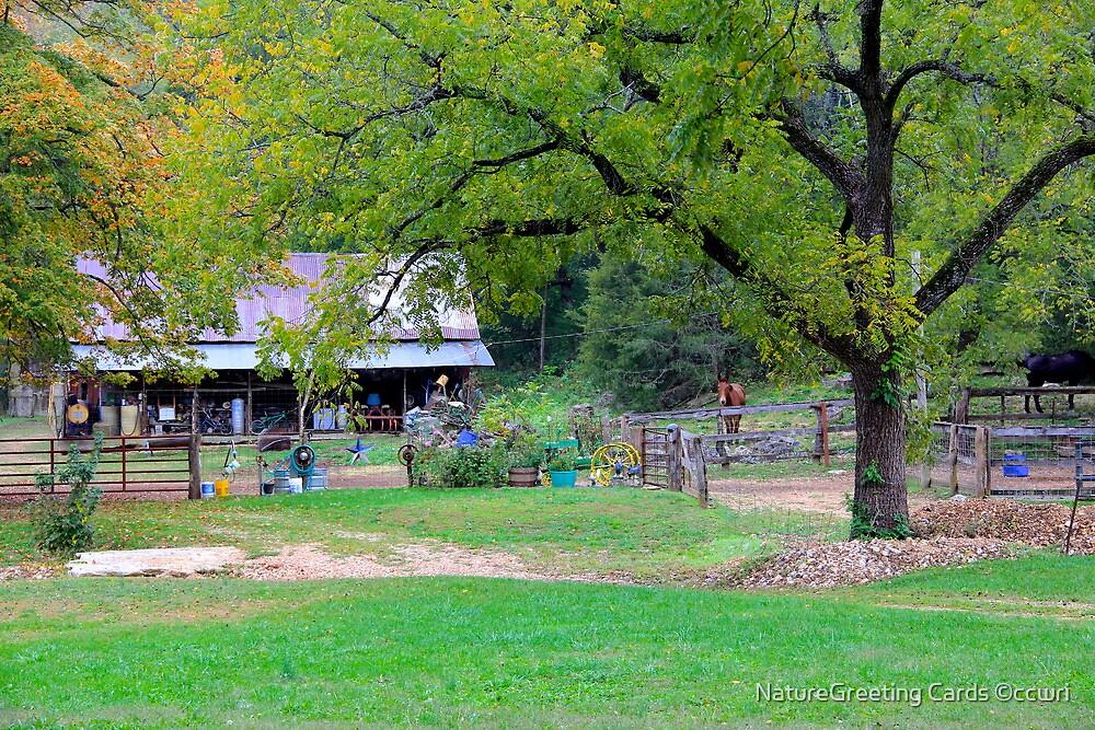 Ozark Homestead by NatureGreeting Cards ©ccwri