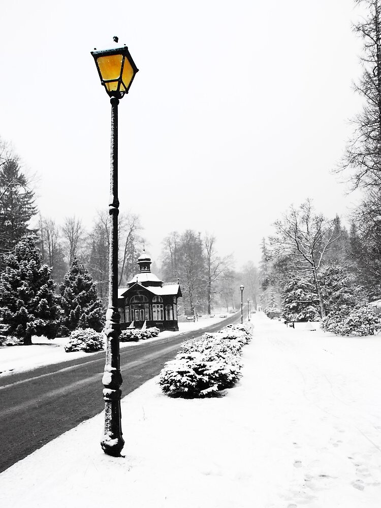 Snow Scene by michelle arthur