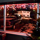 Christmas Lights by Fred Moskey