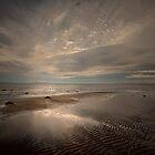 A WINTERS WALK ON THE BEACH by leonie7