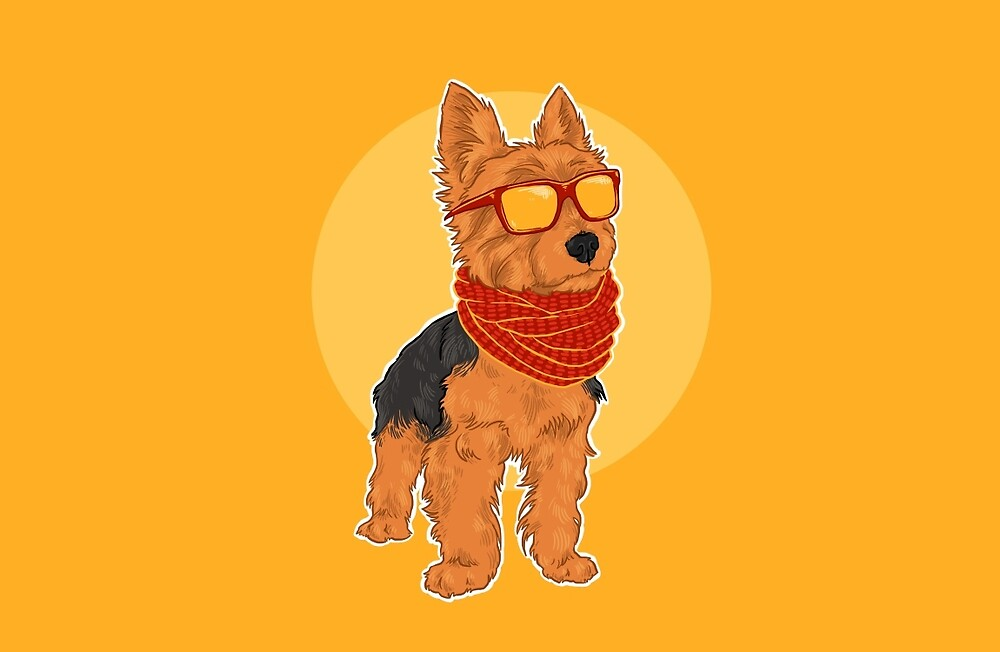 California Yorkie Dog Wearing Scarf Sunglasses / Sporto by lauren elizabeth