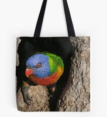 Bramble Bay Lorikeet Nest Tote Bag