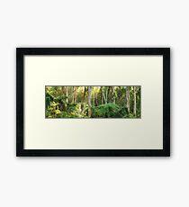 Dawn Lights The Dandenongs, Australia Framed Print