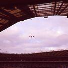 Plane. Twickenham. by Robert Steadman