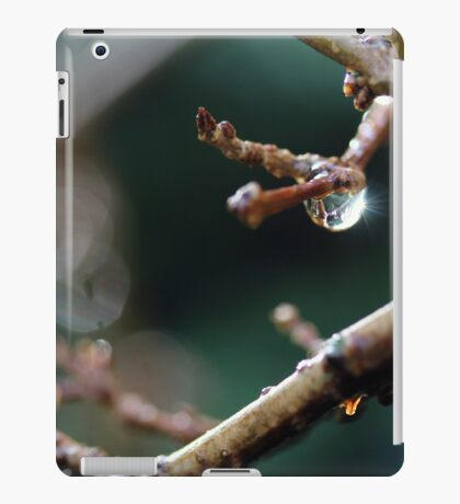 Ok...we've really had enough of all the wet stuff now... iPad Case/Skin
